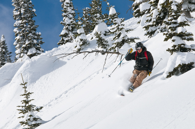 Photo of the Day Jackson Hole The Mountain Pulse 01/24/11- Powder
