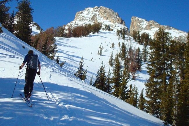 The Mountain Pulse Photo of the Day 01/30/11 - Skiing Grand Teton National Park