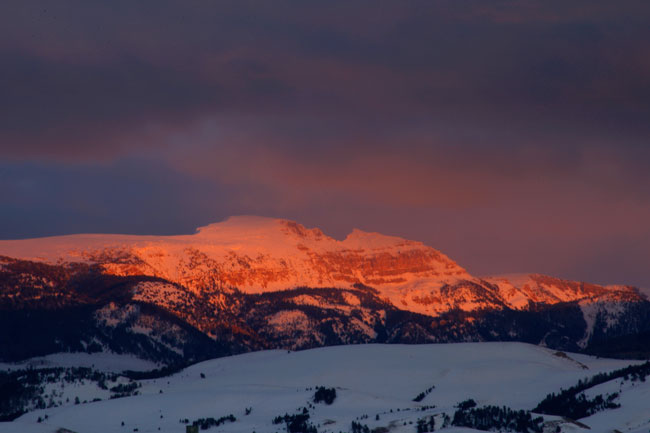 The Mountain Pulse Photo of the Day 02/01/11