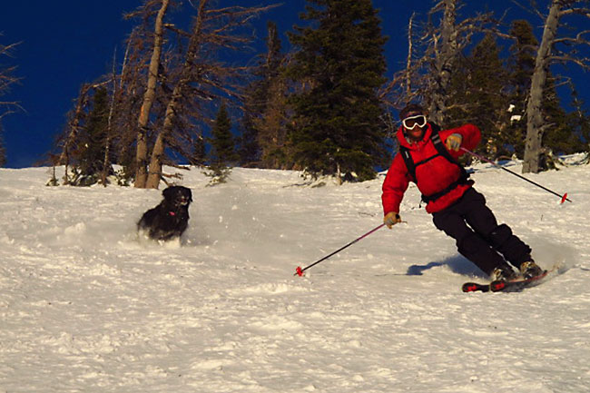The Mountain Pulse Photo of the Day 02/15/11 - Skiing Teton Pass in Jackson Hole