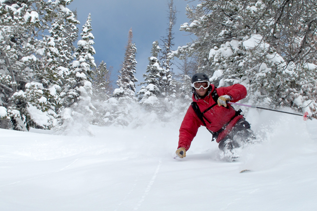 The Mountain Pulse Photo of the Day 03/11/11 - more fresh pow