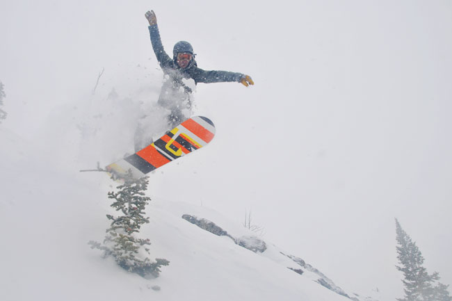 The Mountain Pulse Photo of the Day 03/18/11 - Bonking trees in Jackson Hole