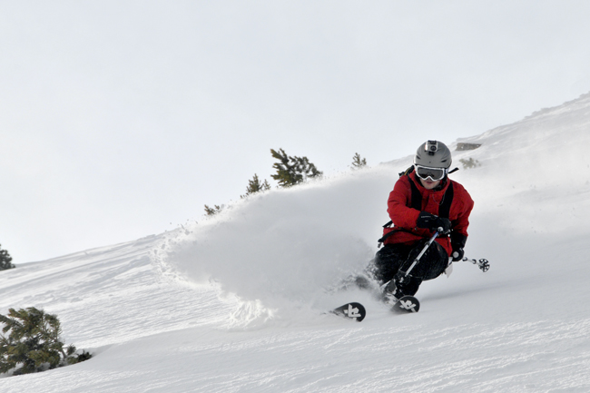 The Mountain Pulse Photo of the Day Jackson Hole 03/21/11 - ripping skier