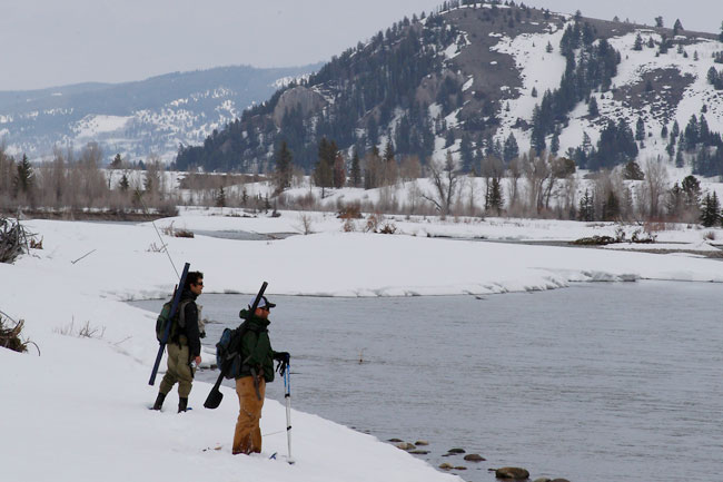The Mountain Pulse Photo of the Day 04/18/11 - Fly fishing on the Snake River