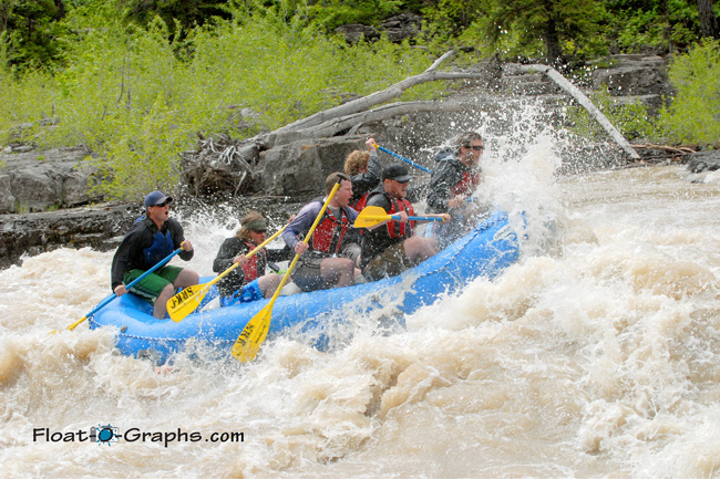 Photo of the Day in Jackson Hole 06-26-11 - Snake River Canyon, Lunch Counter Rapid