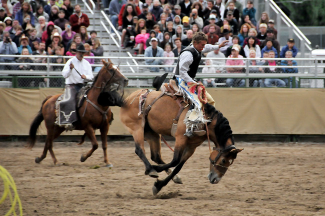07-30-11, teton county fair rodeo, jackson hole, wyoming, the mountain pulse