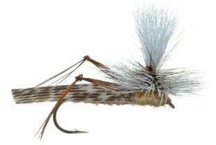 Fly Fishing Hopper The Mountain Pulse Jackson Hole Grand Teton
