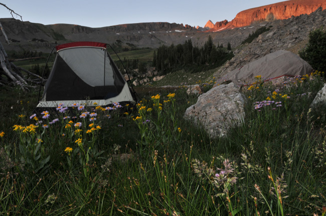 The Mountain Pulse Grand Teton National Park Camping Tent Jackson Hole