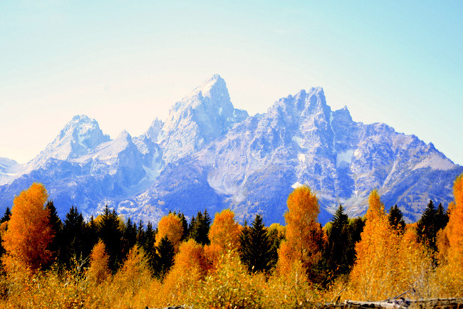 Grand Teton National Park fall colors jackson hole wyoming