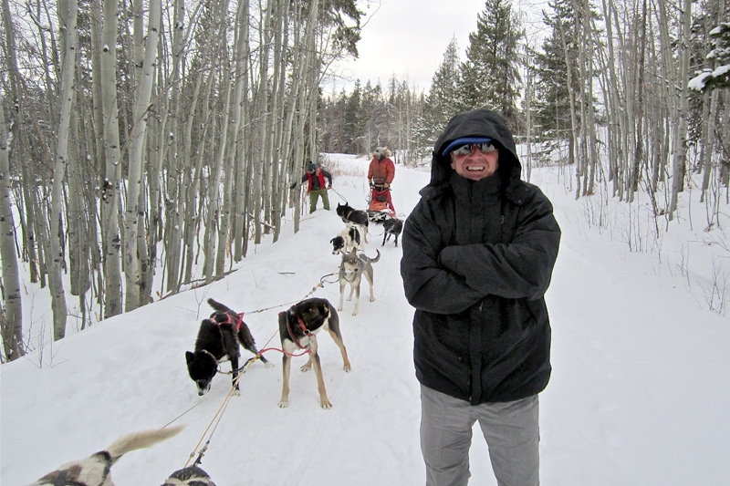 dog_sledding_10, dog sledding, togwotee pass, jackson hole wyoming, the mountain pulse