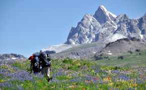 The Mountain Pulse Geoprogramming Jackson Hole Hiking Trails