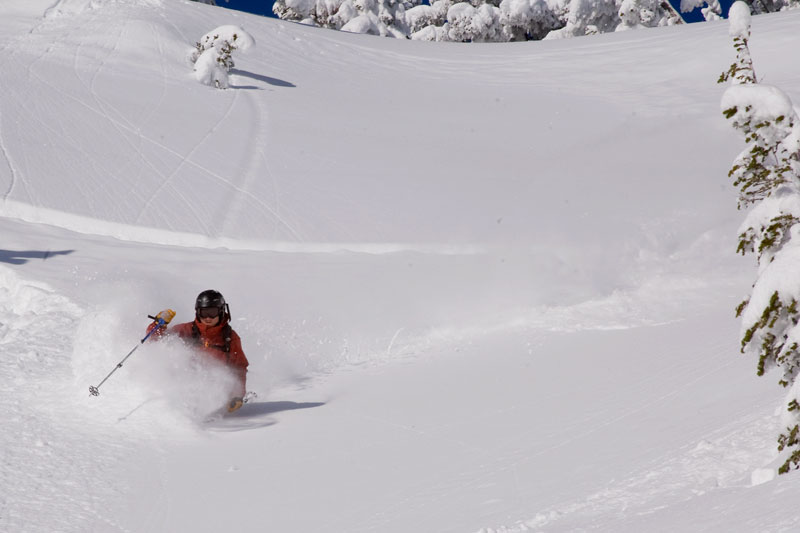 the mountain pulse, photo of the day, jackson hole, powder, skiing, casper bowl
