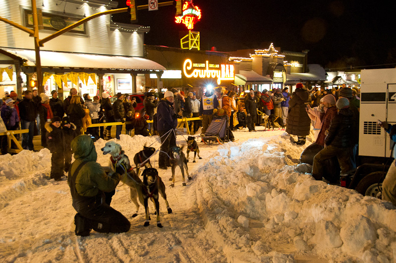 jackson wyoming sled dog race jackson hole the mountain pulse