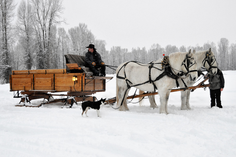 AJ Derosa vintage sleigh ride dinner the mountain pulse jackson hole wyoming