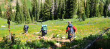 hiking_02, jackson hole wyoming hiking trail guides, google earth trail maps, grand teton national park