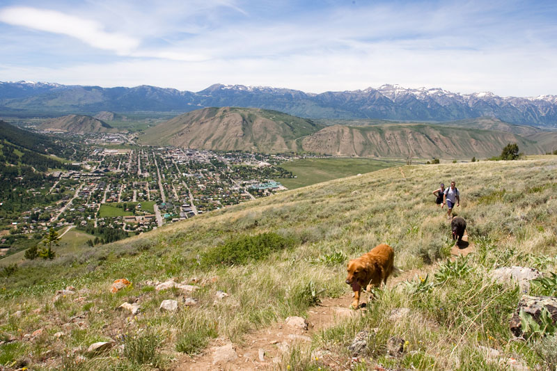 the mountain pulse, photo of the day, jackson hole, hiking, bridger teton national forest