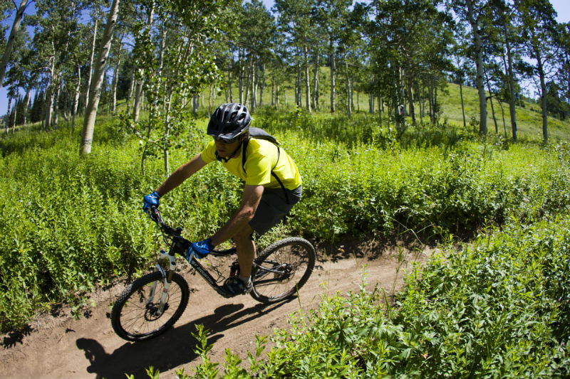 grand targhee mountain biking