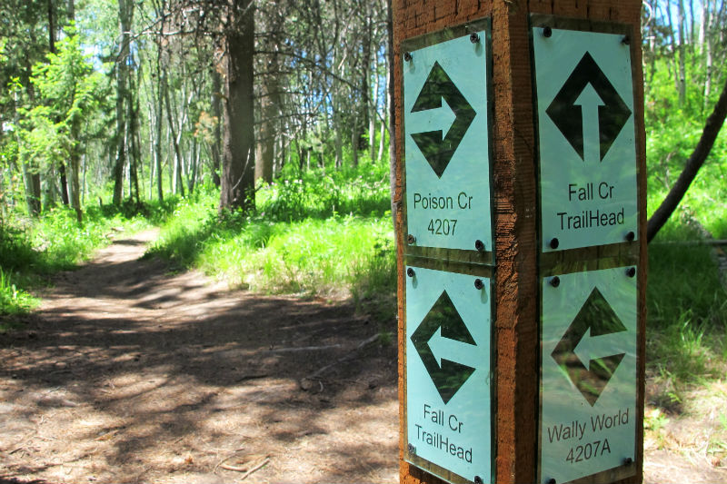 munger mountain trail signage