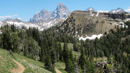 grand_targhee_mountain_bike_trail_tetons_550