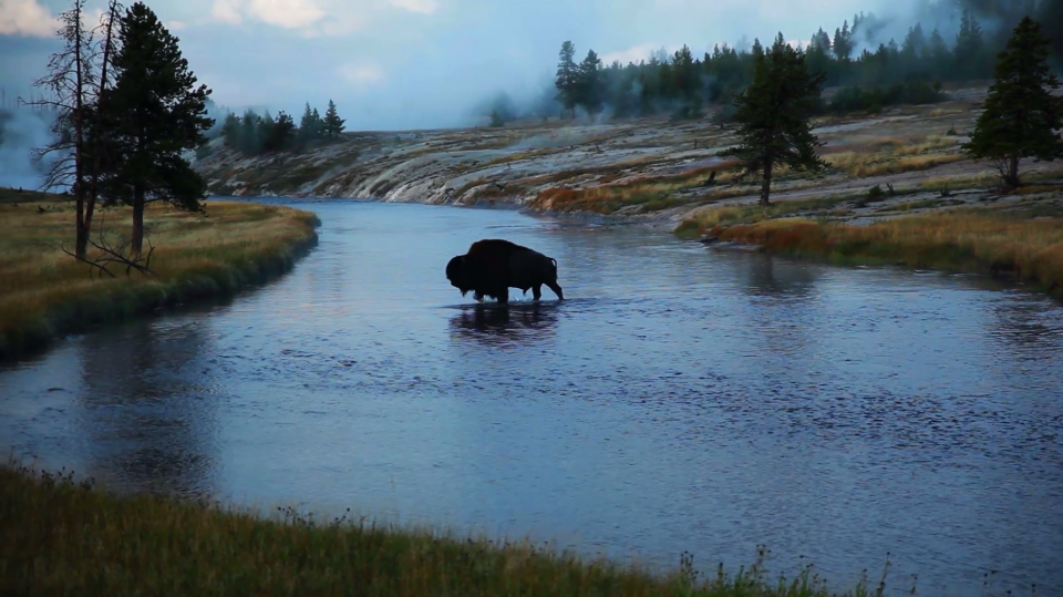 Video of the Day Primoridial Vortex Productions jackson Hole Grand Teton National Park Yellowstone National Park
